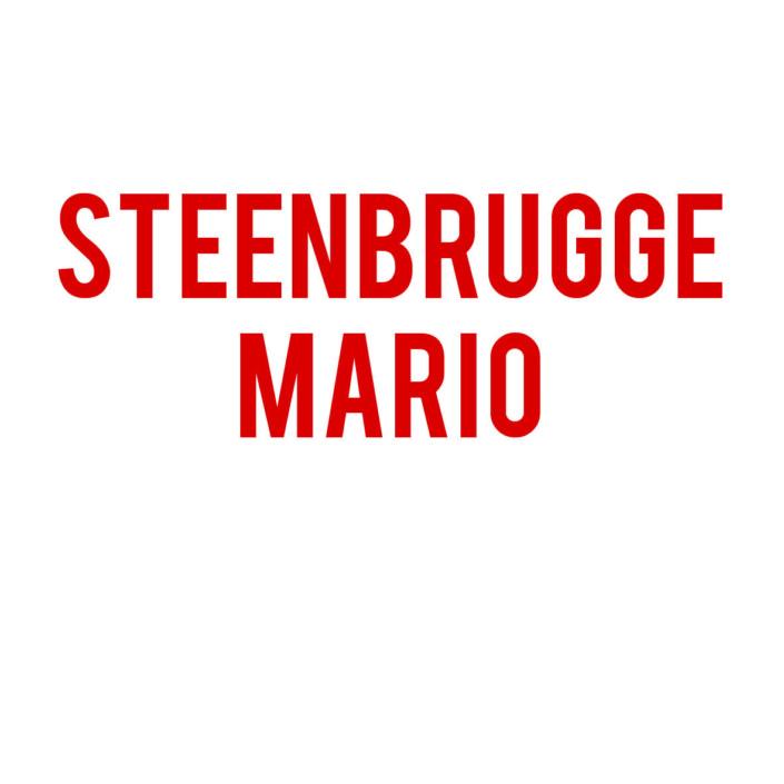 Steenbrugge Mario