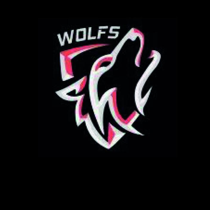Wolfs Automobielbedrijf
